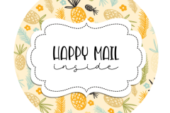 2inch-round-pp-pineapple-happy-mail-sticker